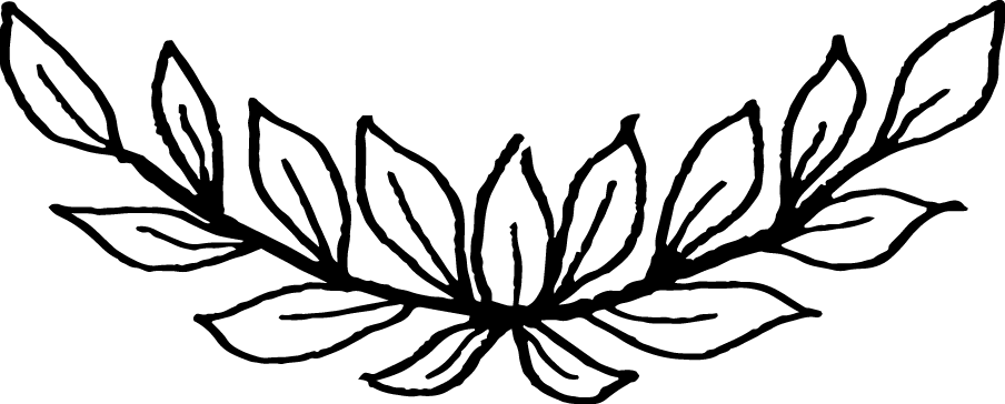 drawn design vectors