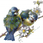 03_spring_two_birds_graphicsfairy