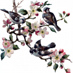 04_spring_four_birds_graphicsfairy