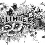 16_bw_typography_climbers_graphicsfairy