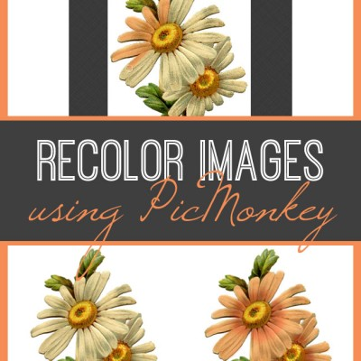 recolor-image-with-picmonkey-graphicsfairy