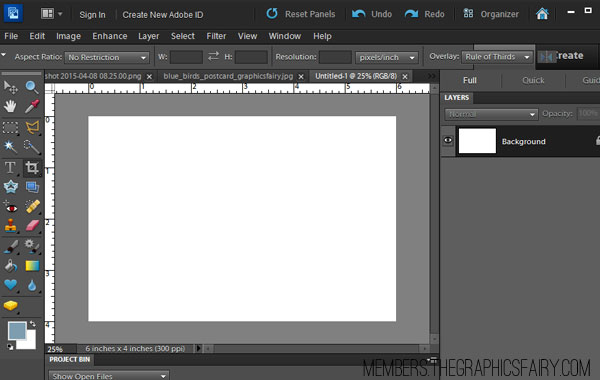 how to paste image on pdf
