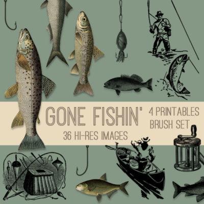fishing_650x650_graphicsfai