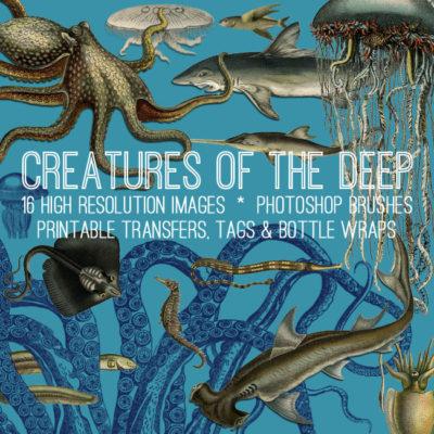 sea_creature_650x650_graphicsfairy