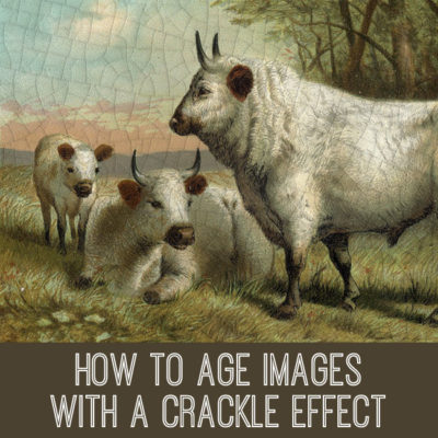 crackle-tutorial-graphicsfairy