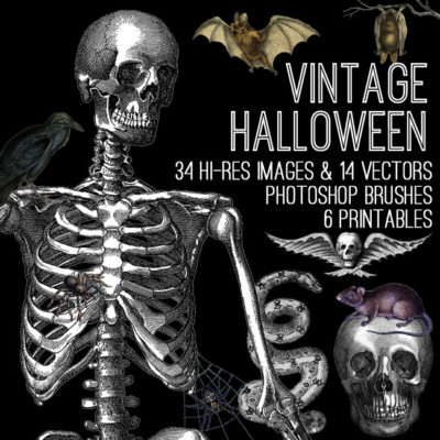 halloween_650x650_graphicsfairy