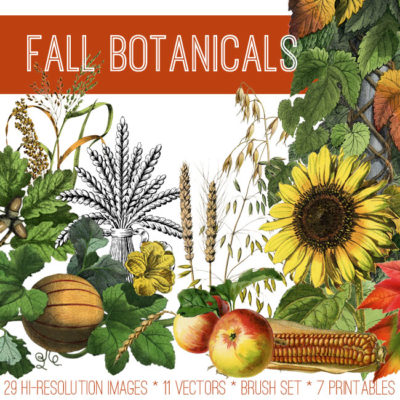 fall_botanicals_650x650