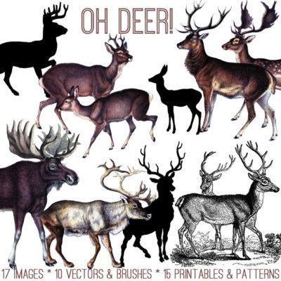 oh_deer_650x650