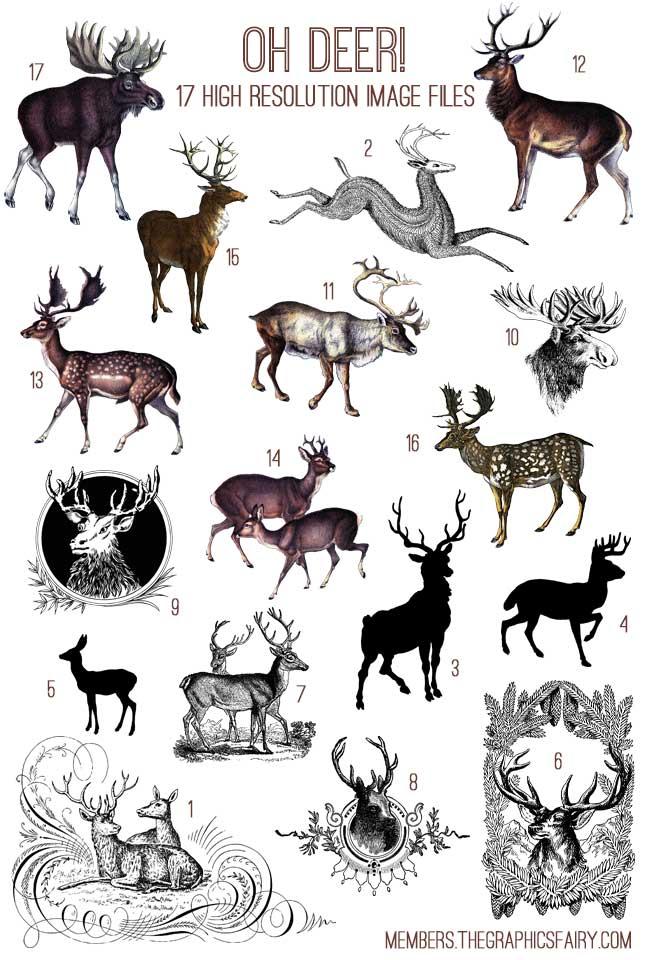 oh_deer_image_list_graphicsfairy