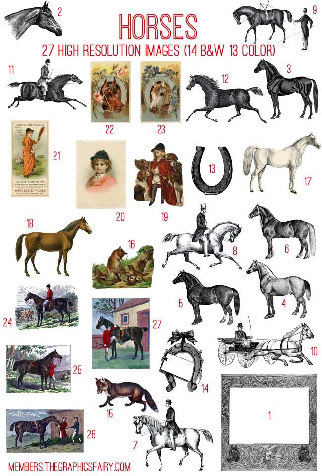 horses_image_list_graphicsfairy