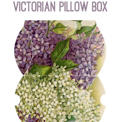 thumbnail of pillow_box_lilac_graphicsfairy
