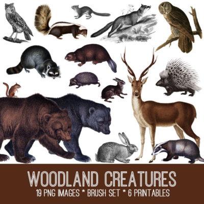 woodland_650x650