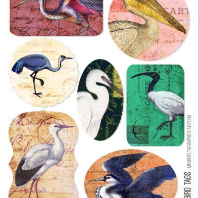 thumbnail of shore_bird_tag_set_graphicsfairy