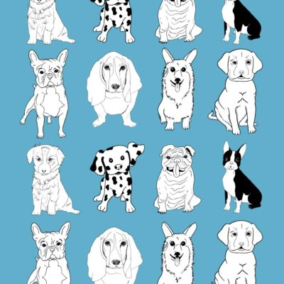 thumbnail of dogs_mini_wrapping_paper_blue_graphicsfairy