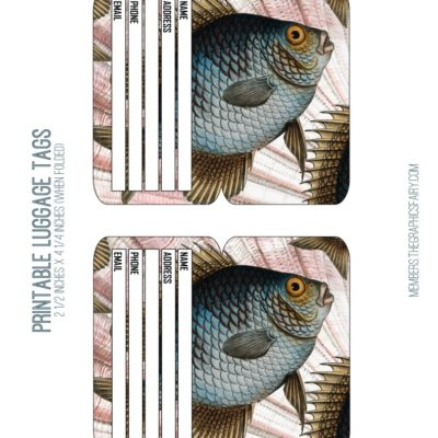 thumbnail of luggage_tags_fish_graphicsfairy