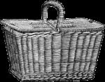 08_basket_graphicsfairy