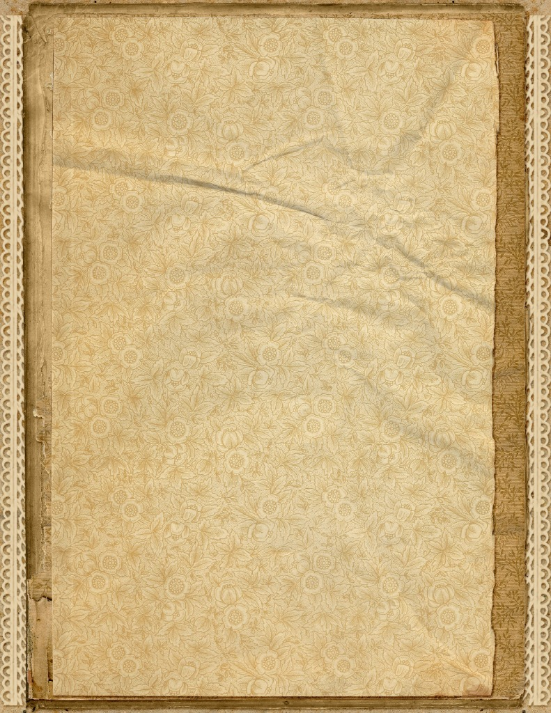thumbnail of DelicateEndPapers-StackedPaper-03-GraphicsFairy