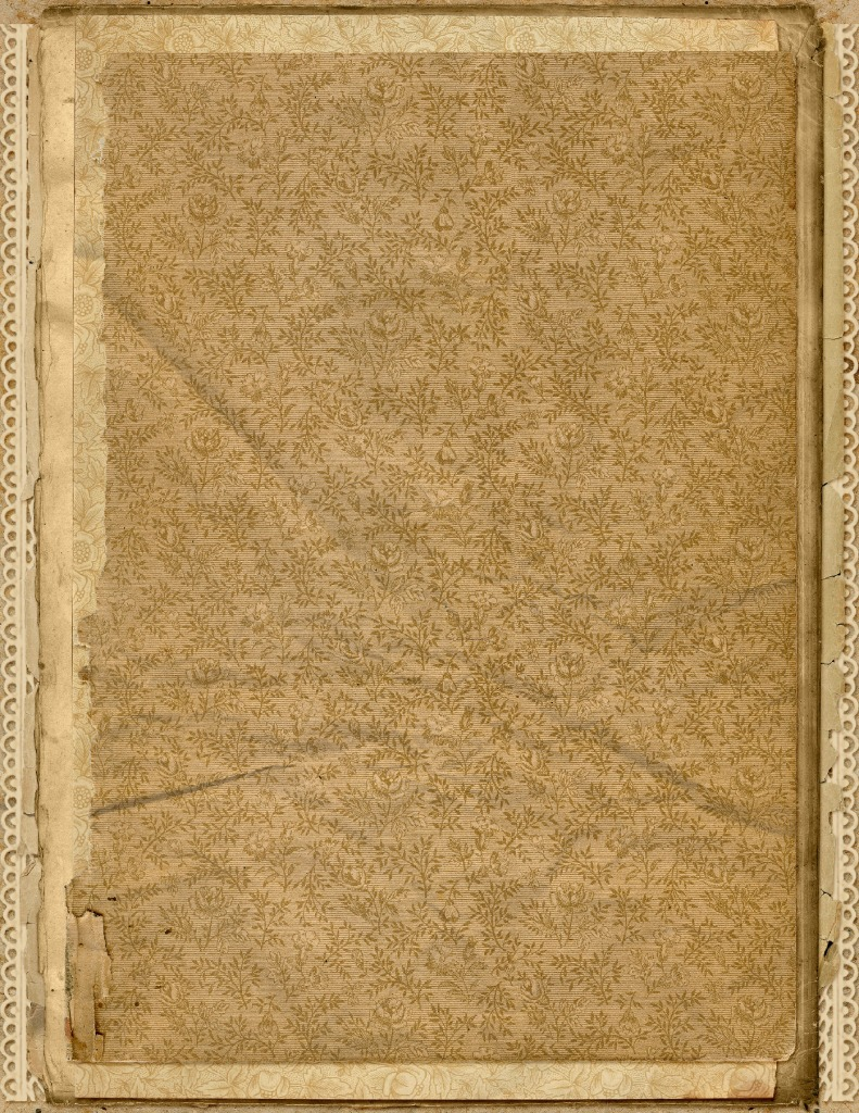 thumbnail of DelicateEndPapers-StackedPaper-04-GraphicsFairy