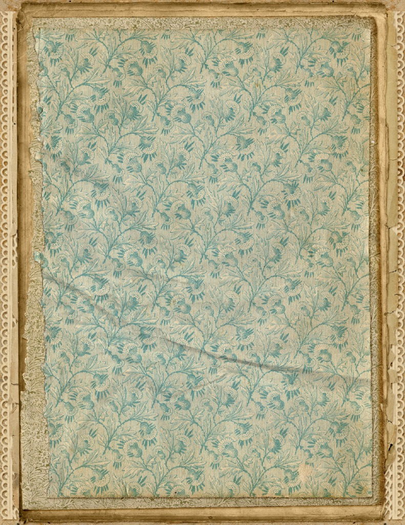 thumbnail of DelicateEndPapers-StackedPaper-05-GraphicsFairy