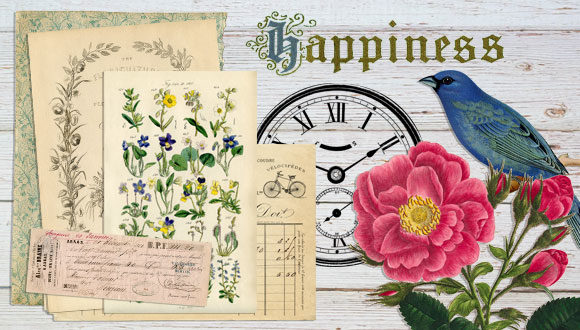 photograph of table top vintage receipts, botanical page, bird and flower